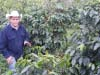 COMSA producer Oscar Alonso demonstrates in his fields what intensive organic production can look like, with amazing yields and quality.