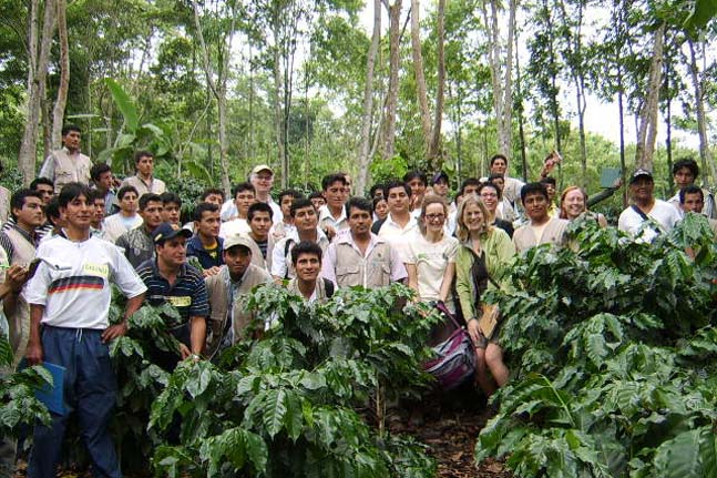 As a part of our annual roaster / producer gathering, CoopCoffees visits Cenfrocafe for a learning exchange in the field.