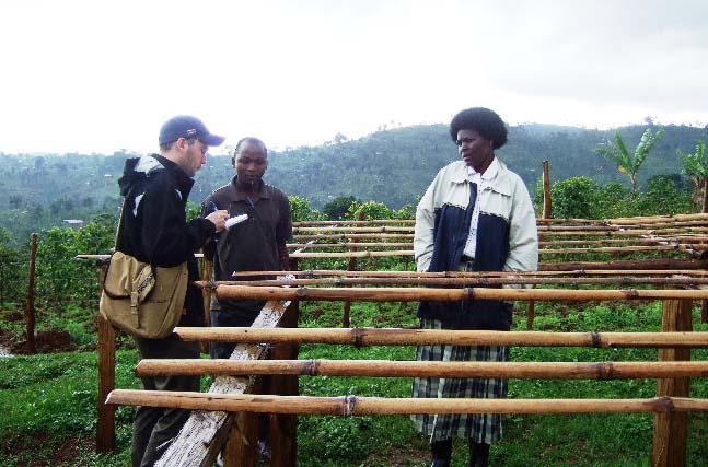 Gumutindo supports its members efforts to construct raised drying beds, assuring best possible coffee quality.