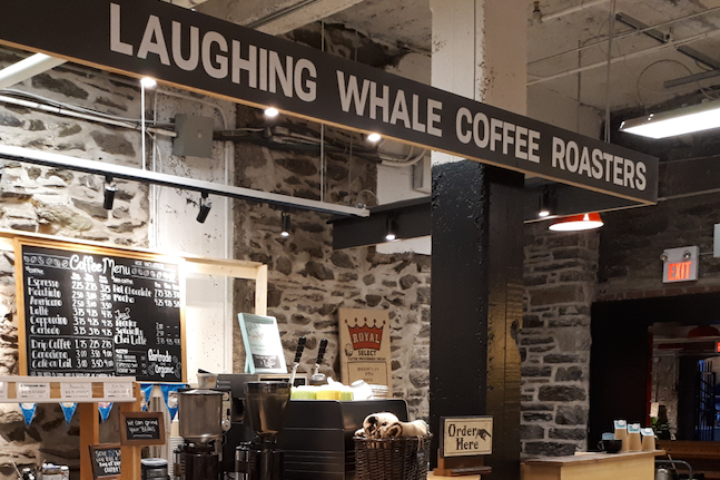 Laughing-Whale-2