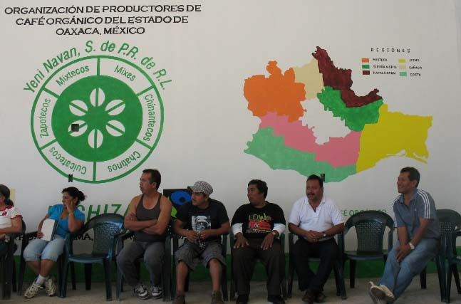 MICHIZA was founded in 1985 with representatives from each of the Indigenous Mixe, Chinanteco, Chatino and Zapoteco farmer communities.