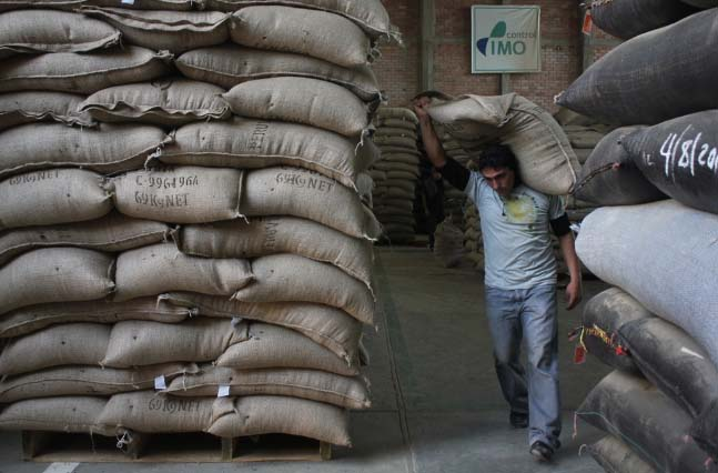 Norandino exports some 125 containers of coffee anually into fair trade, organic and gourmet markets.