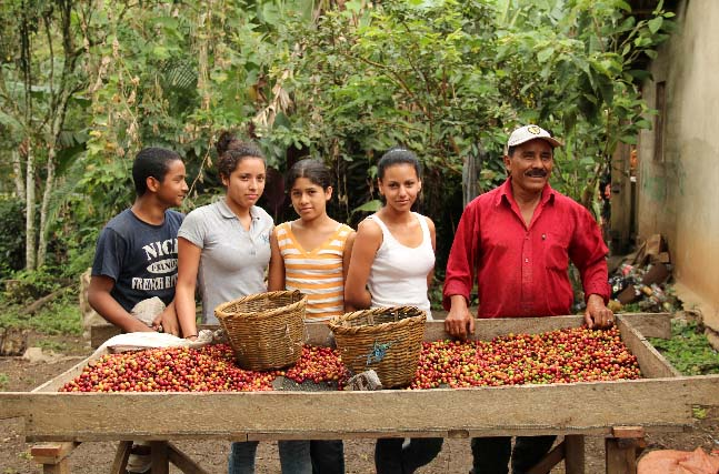 Guillermo Sanchez and his family show the results of their harvest. Due to roya impact and fluctuating prices they will be getting by with less this year.
