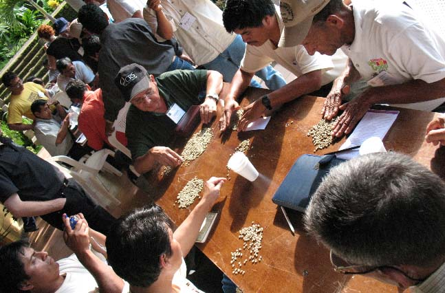During a roaster/producer exchange in 2007 sponsored by CoopCoffees and hosted by CECOCAFEN,  we discuss quality control and calibration during a green-bean, defect-sorting excercise.