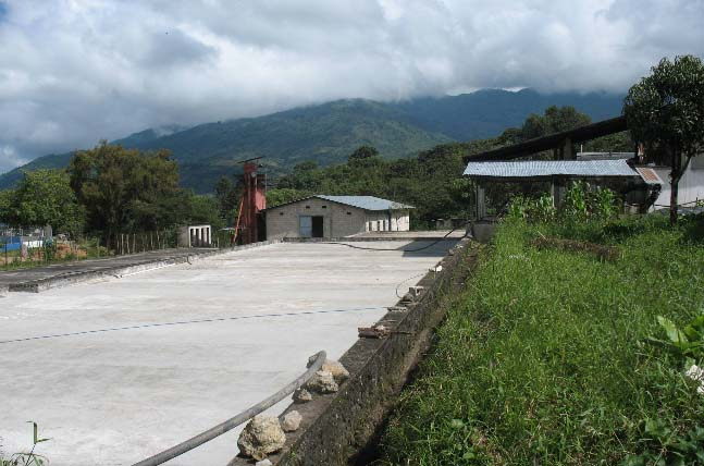 The centralized processing in Jacaltenango offers additional quality controls and a consistently excellent cup profile.