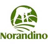 Peru_Norandino_Logo